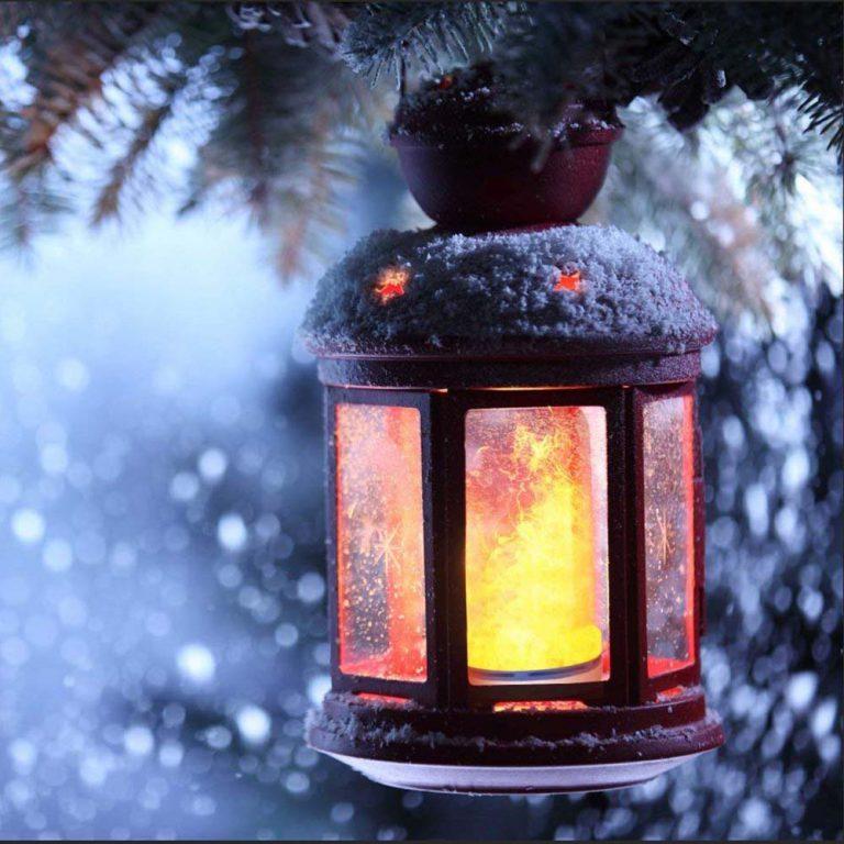 LED Firelight Bulbs