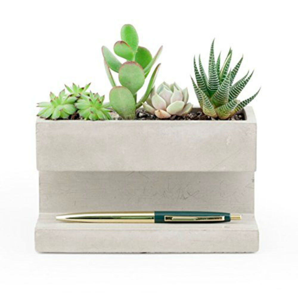 Kikkerland concrete desktop planter adds amazing look to your office