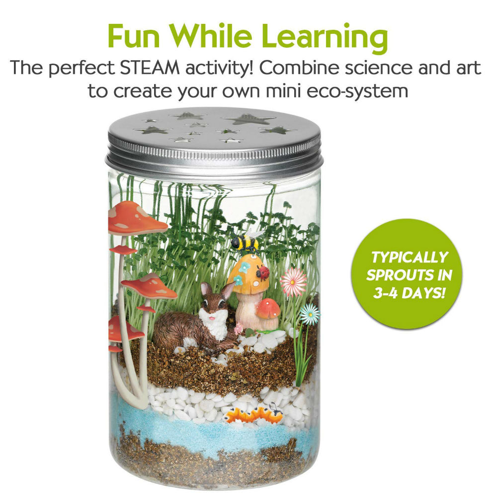 Terrarium kit for kids