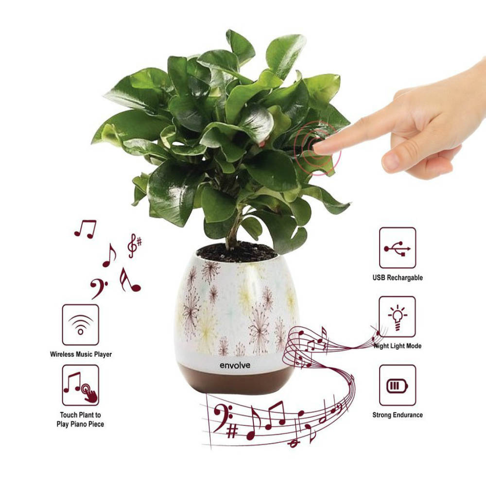 Magical Plant Piano Pot with Wireless Bluetooth Speaker