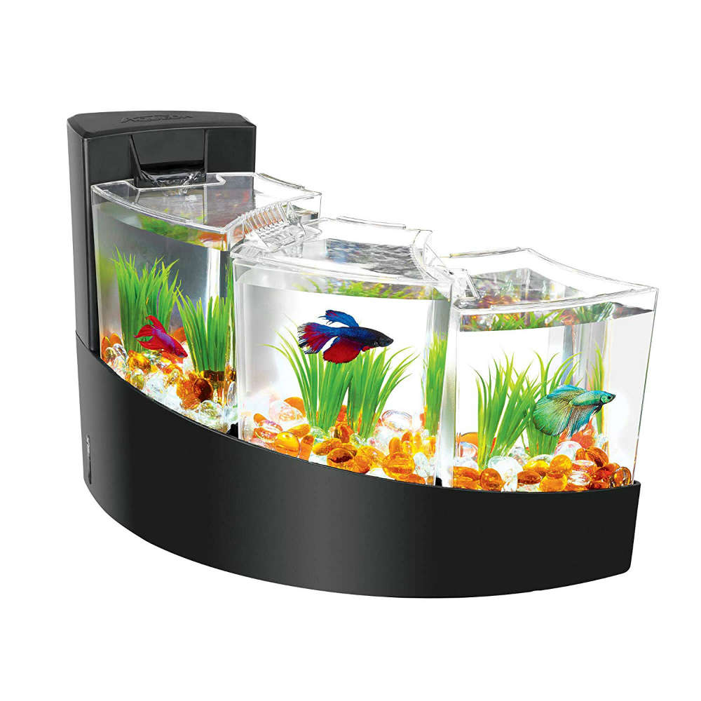 Compartmental Betta Waterfalls Kit Adds Life To Your Living Room