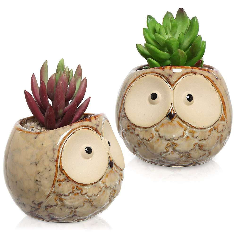 Mini Ceramic Plant Pots with Owl Face