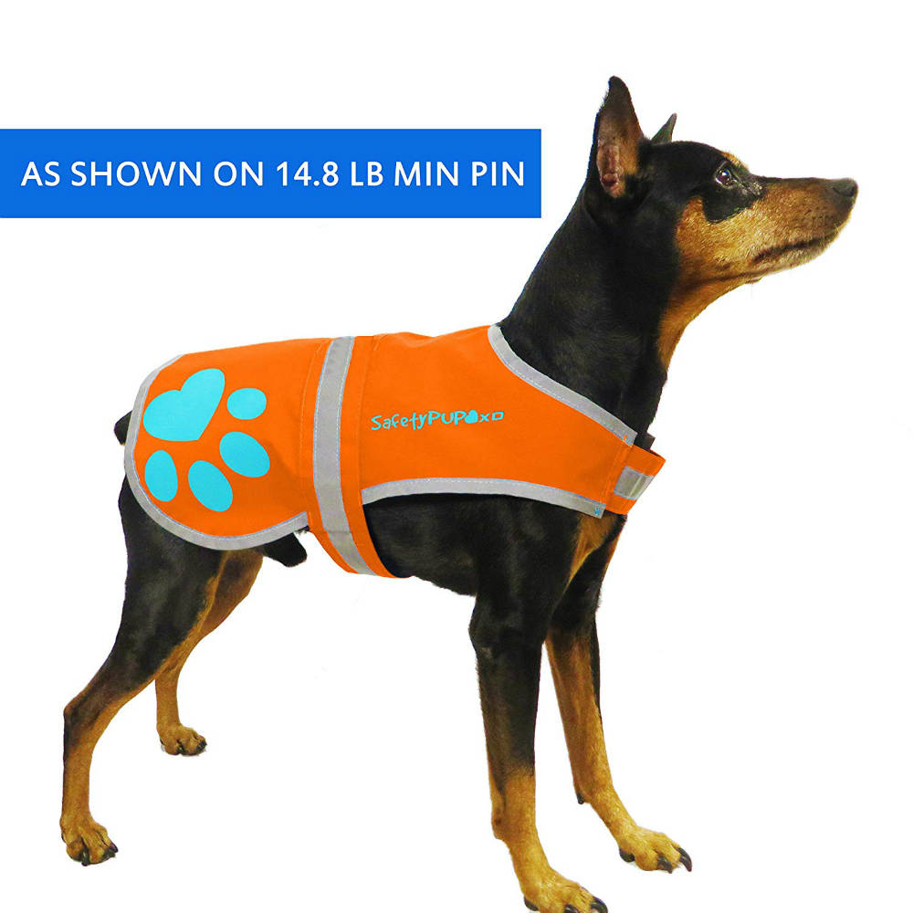 SafetyPUP XD Fluorescent Dog Vest