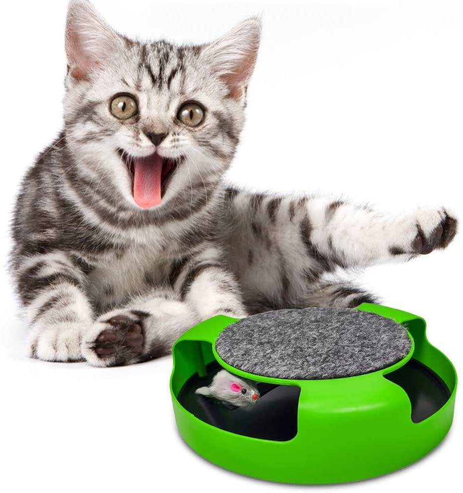Pasking Interactive Cat Toy